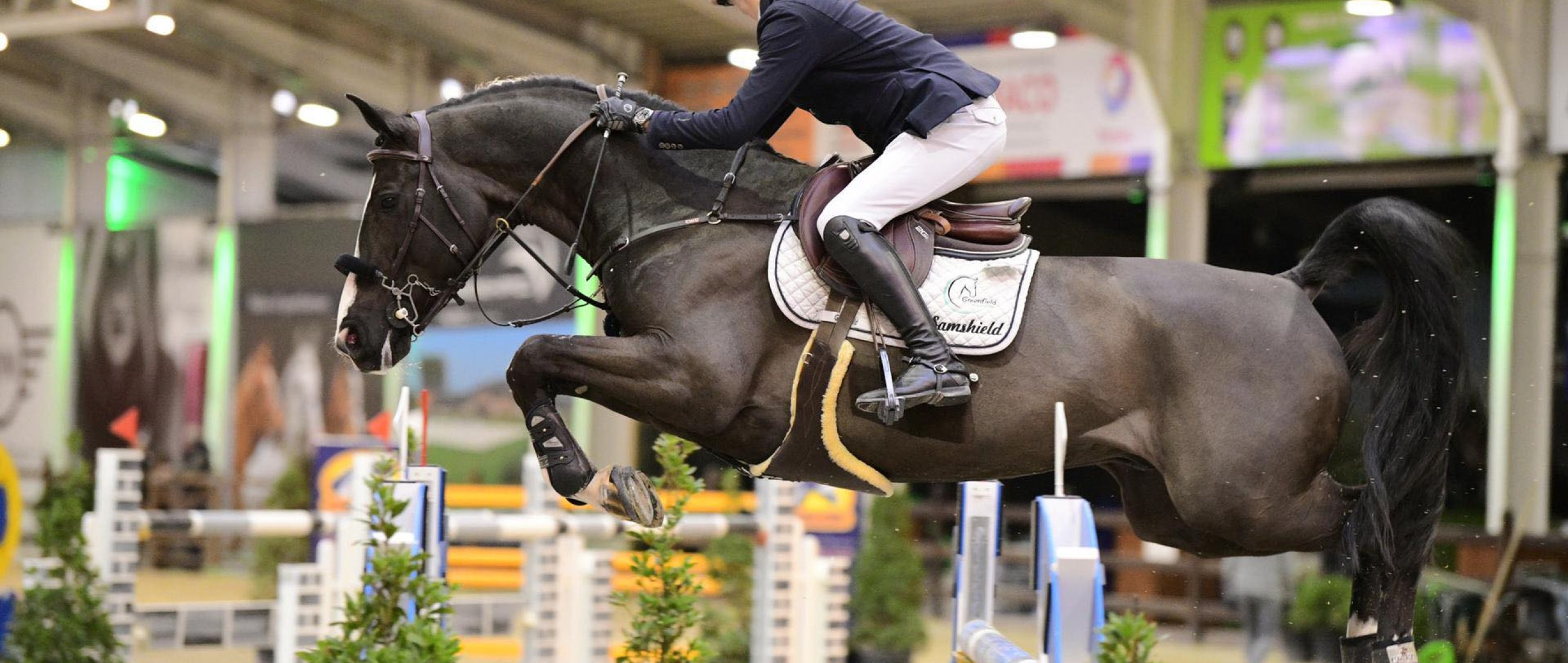 3 wins at the first week of the February tour of CSI** Lier